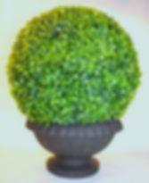 Boxwood Garden Sphere in Urn