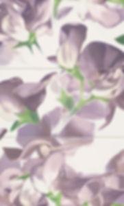 Bloom Violet