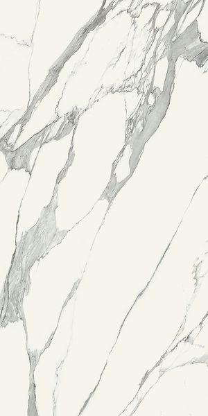 Monolith Spechio Carrara Large Format Tile