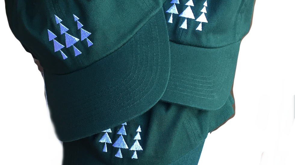 Triangle Park Logo Hat