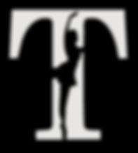 Platinum Full Transparent Logo - Vector.