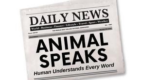 ANIMAL SPEAKS!