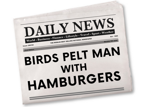 BIRDS PELT MAN WITH HAMBURGERS!