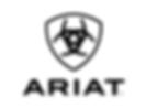 Ariat 2.png