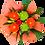Thumbnail: Bouquet Bright & Vibrant