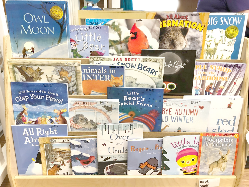 preschool classroom bookshelf filled with winter books