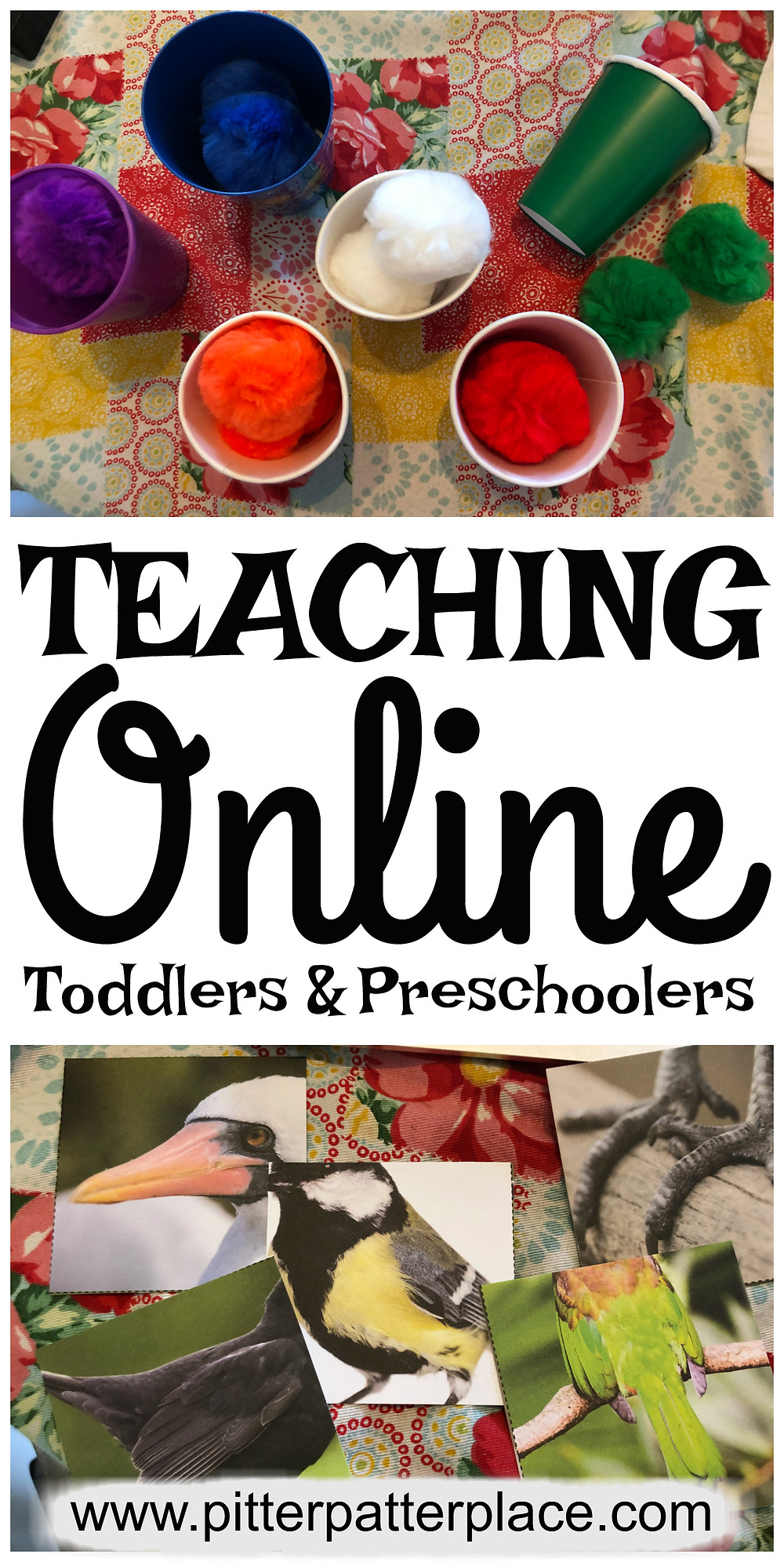 collage that reads Teaching Online Toddlers and Preschoolers
