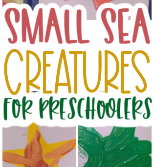 Learning About Small Sea Creatures with Preschoolers