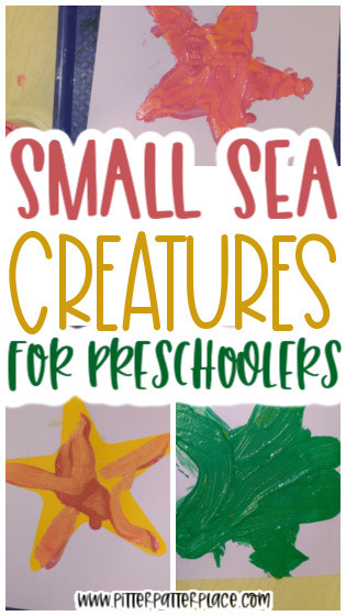 collage of sea star craft images with text: Small Sea Creatures for Preschoolers
