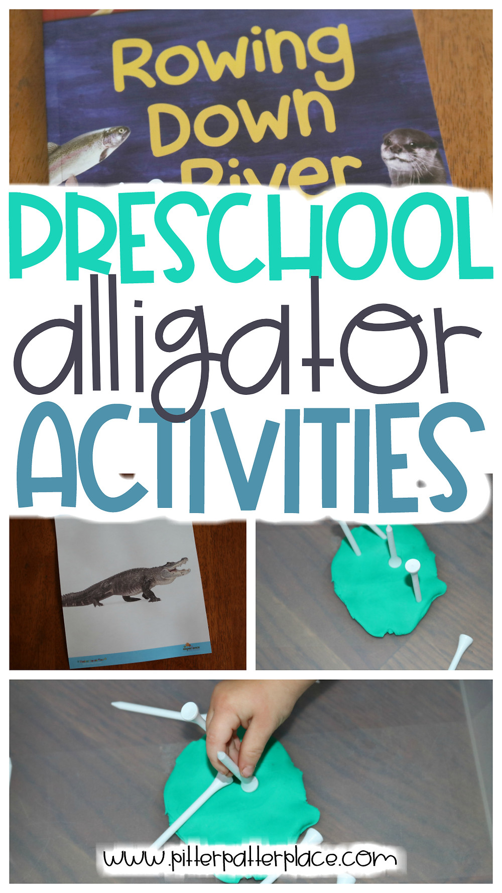 collage of alligator activities with text: Preschool Alligator Activities