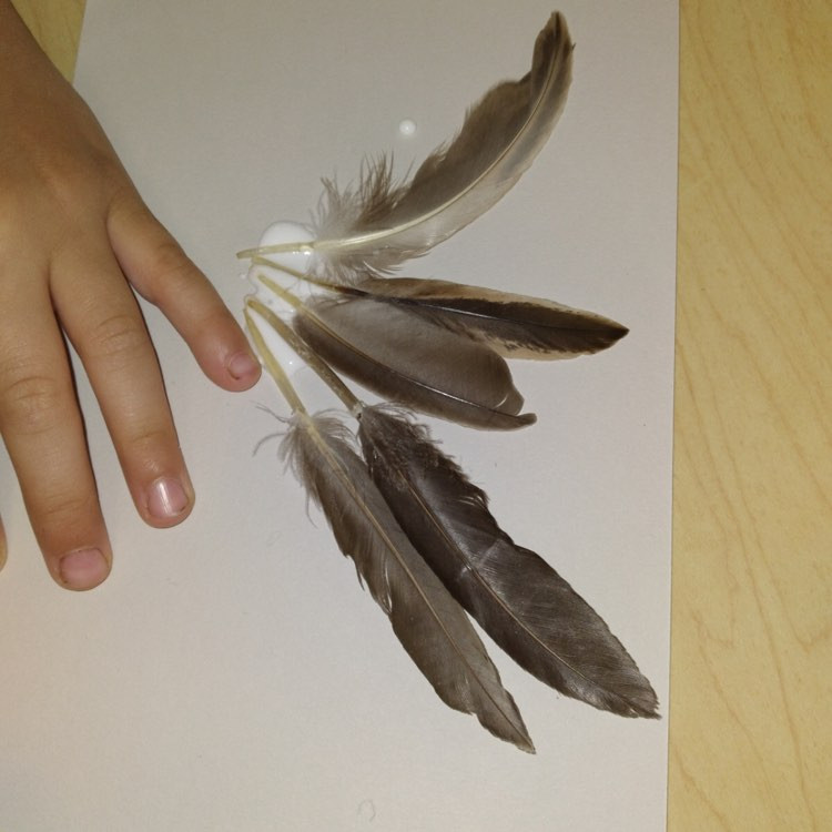 child's finished wing art