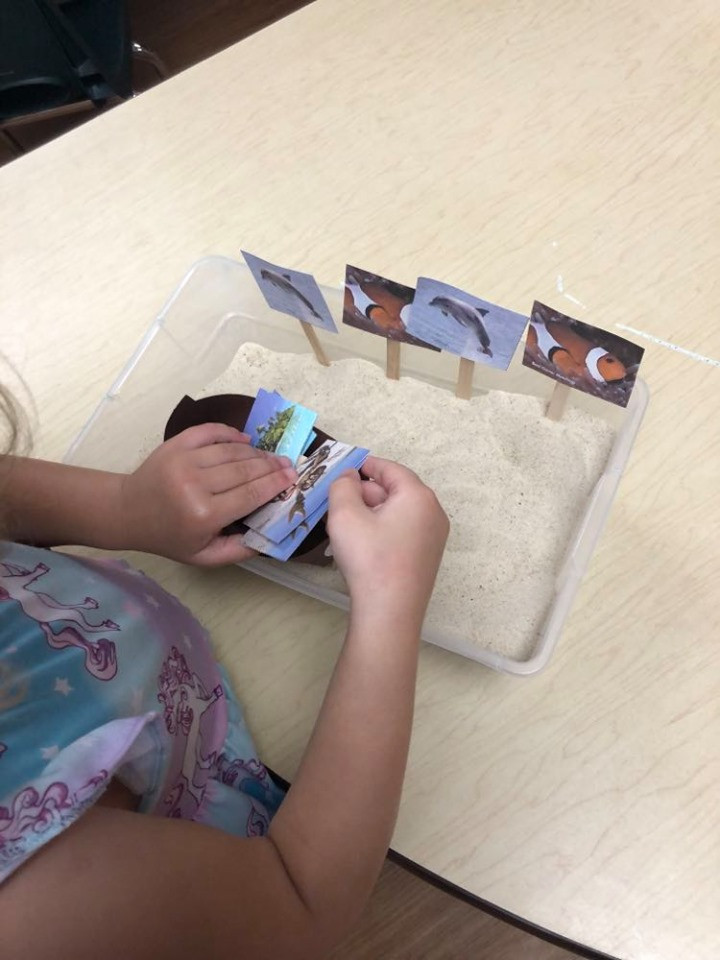 preschooler matching picture cards in sand