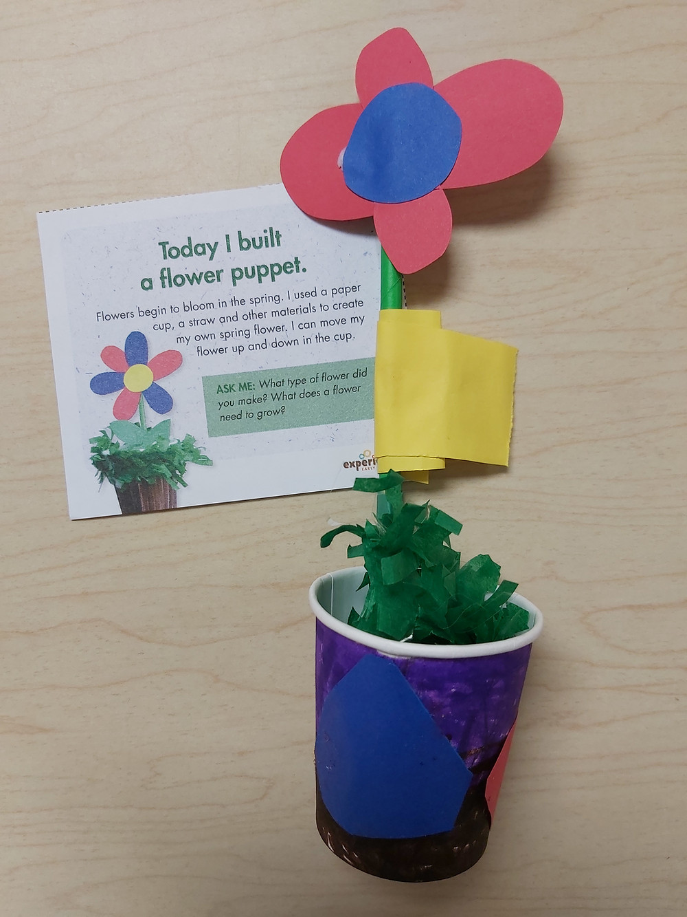 child's finished flower puppet with daily note