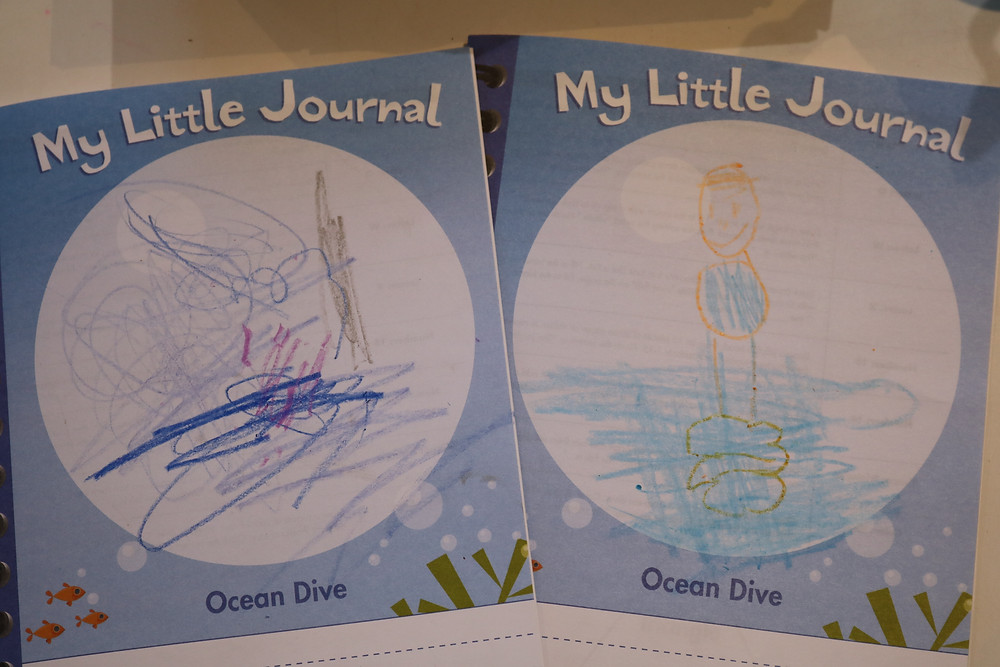 two My Little Journals side by side