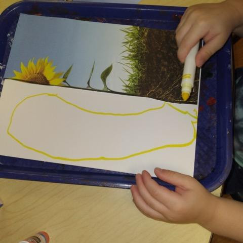 child drawing roots on paper using marker