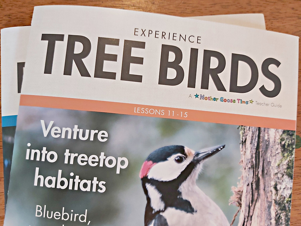 Tree Birds Experience Early Learning Teacher Guide