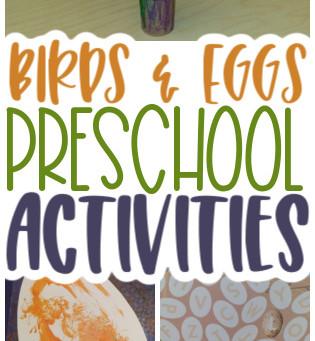 Birds in the Nest for Preschoolers