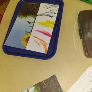 child's roots drawing on tray