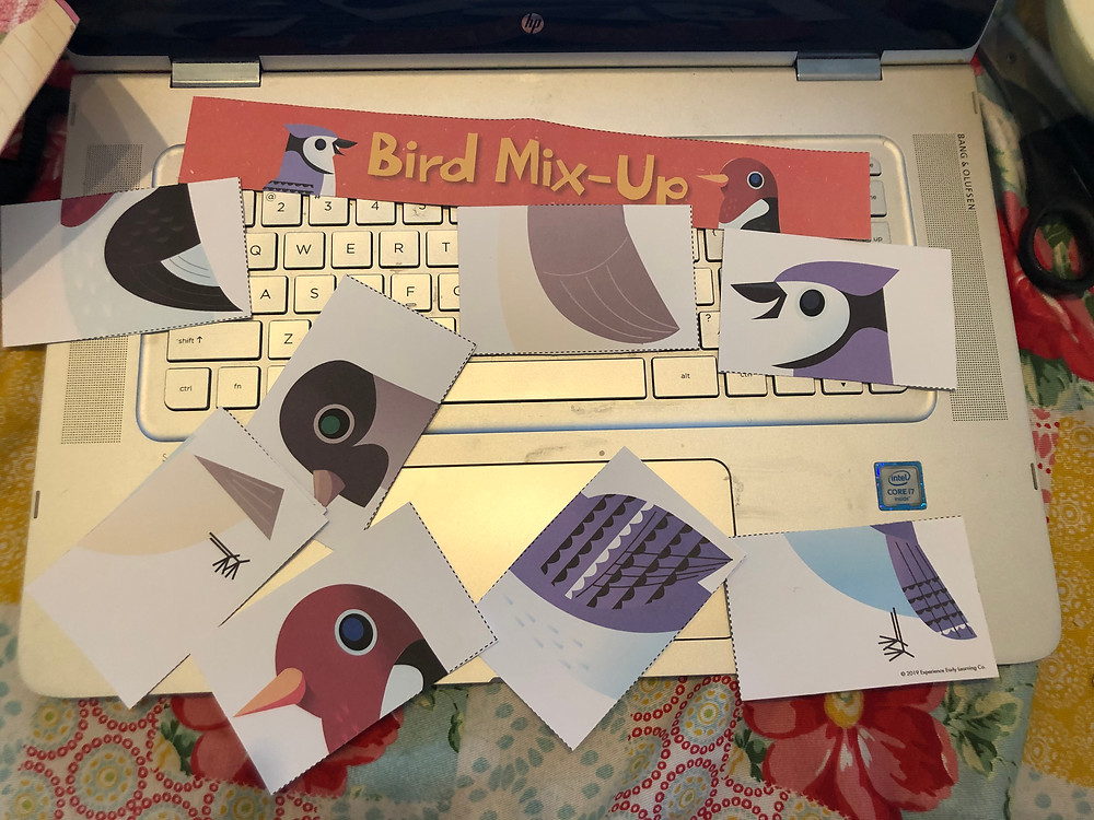 paper bird matching game with pieces all mixed up