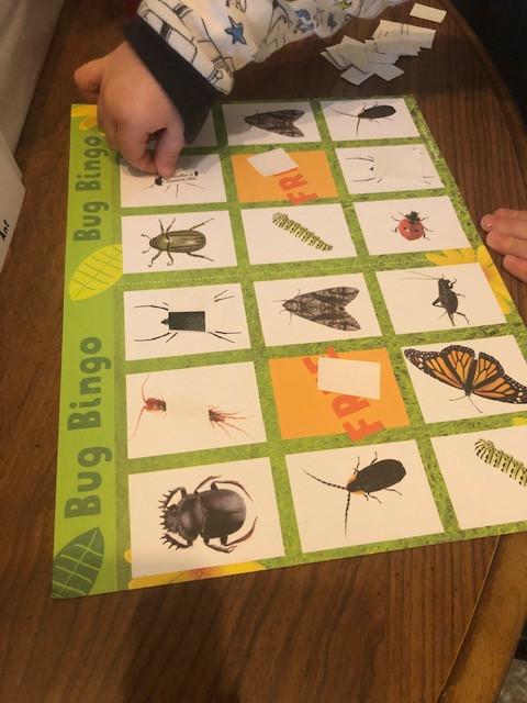 preschool playing Bug Bingo