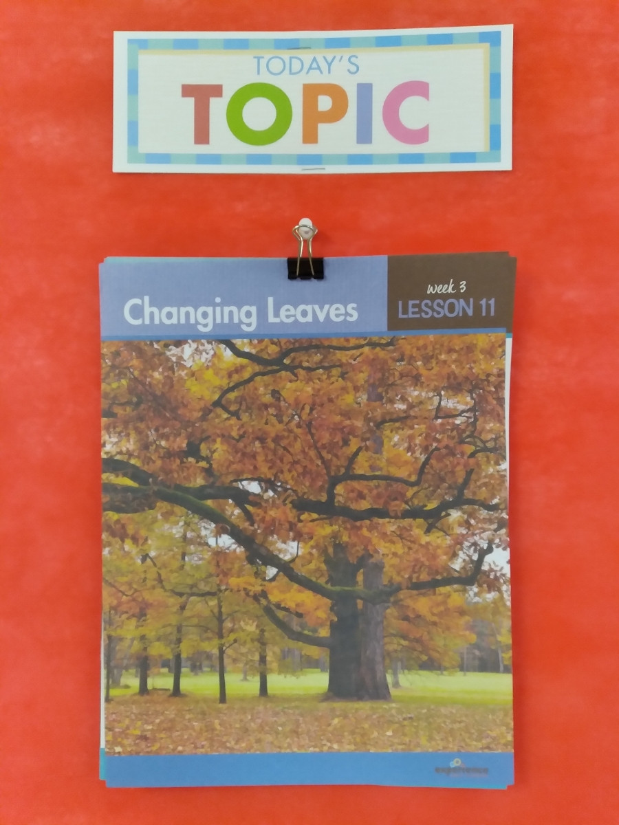 topic poster for Changing Leaves