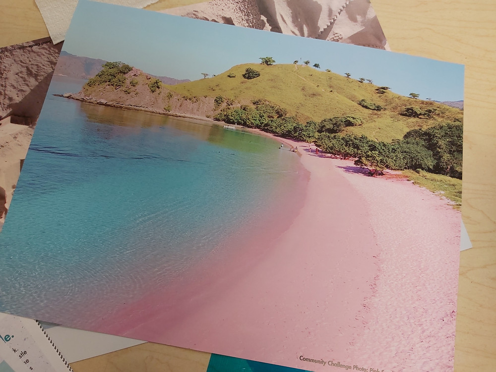 beach with pink sand