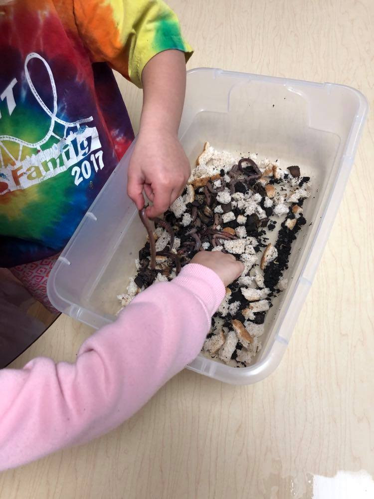 two preschoolers exploring worm sensory bin