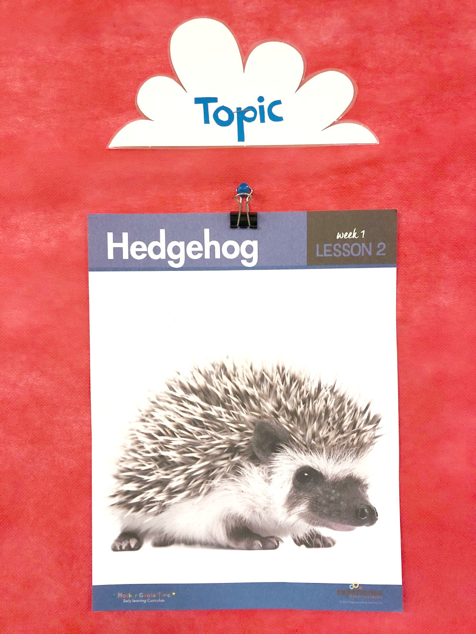 daily topic poster for lesson about hedgehogs