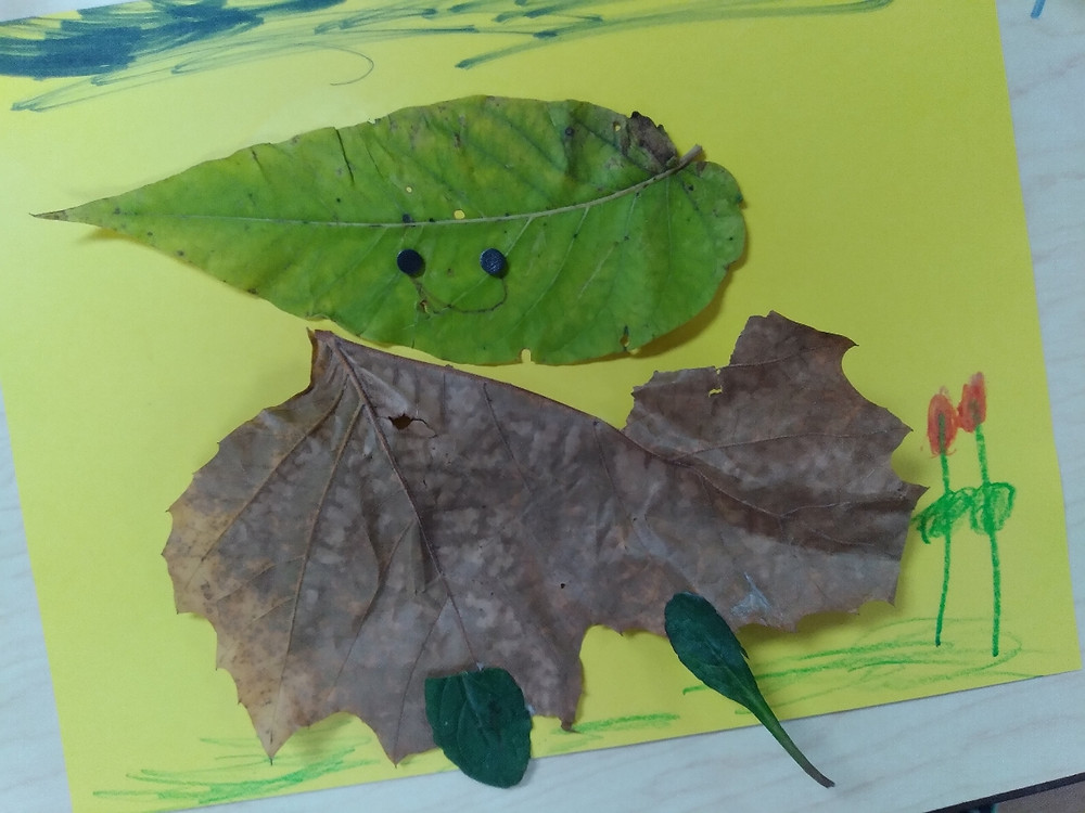leaf creature made by preschool student