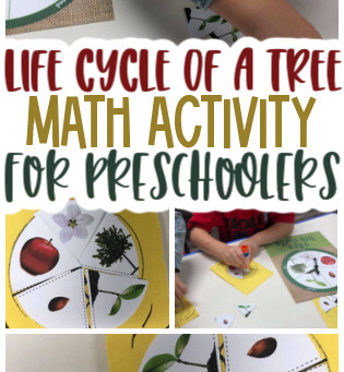 Tree Life Cycle for Preschoolers