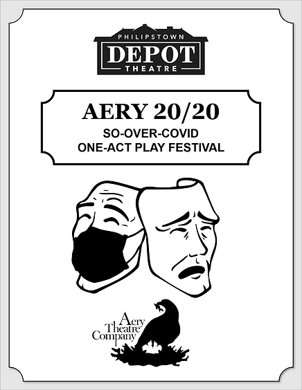 Aery 20_20 Festival.png