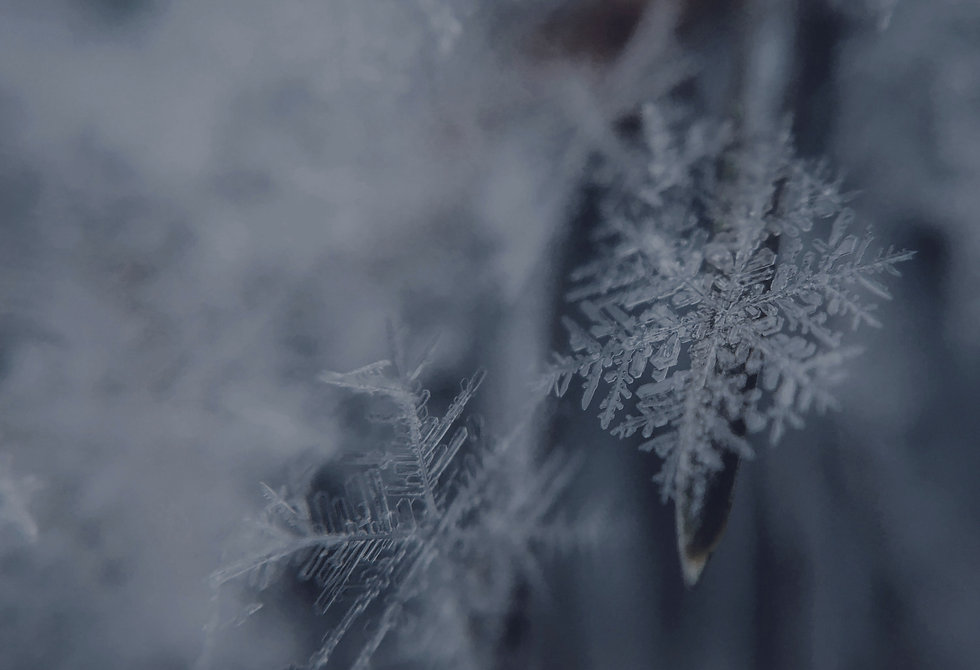 Snowflake_edited_edited_edited_edited_ed