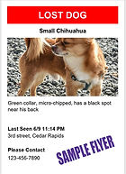 lost-pet-flyer-sample flyer.jpg