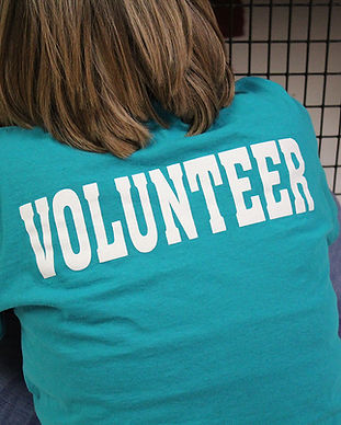 Volunteer Shirt from behind_web.jpg