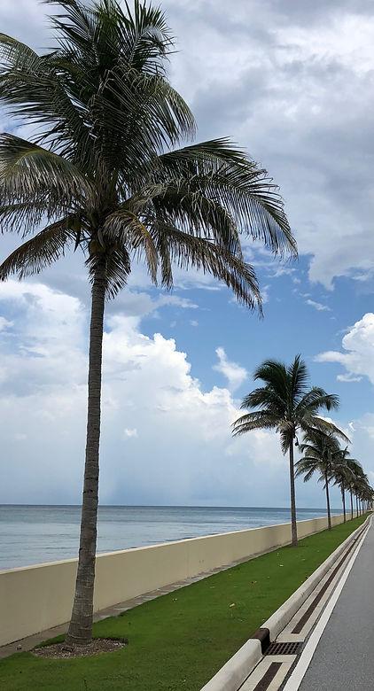 maxperts palm beach