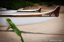 canoes 6