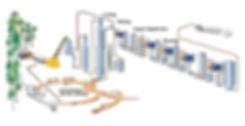 kraft-process-diagram.jpg