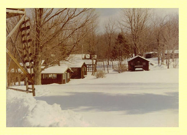 section1-winter.JPG