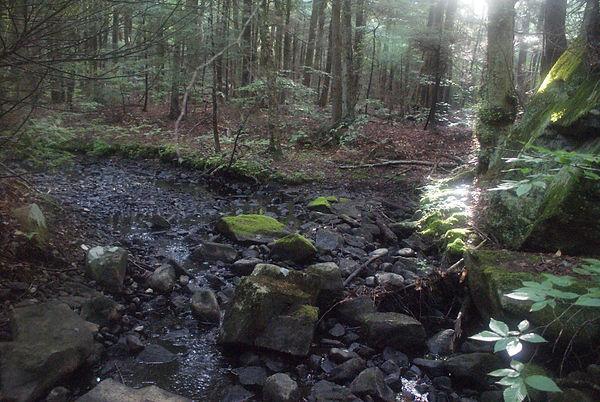Watson Creek 1.JPG