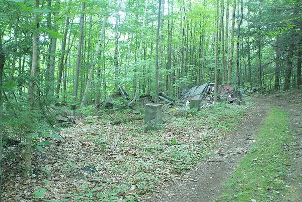 Remnants of Green Biffy 3.JPG