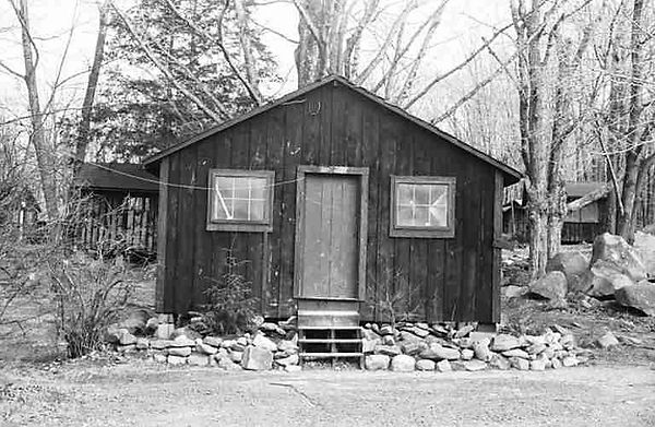 Cabin-Eagle.jpg