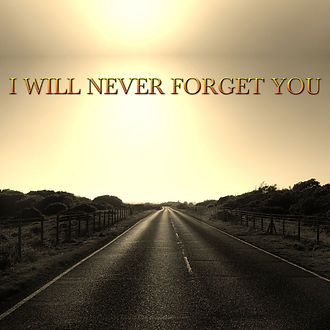 I will never forget you.jpg