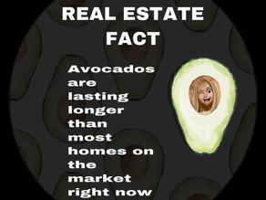 Avocados are lasting longer