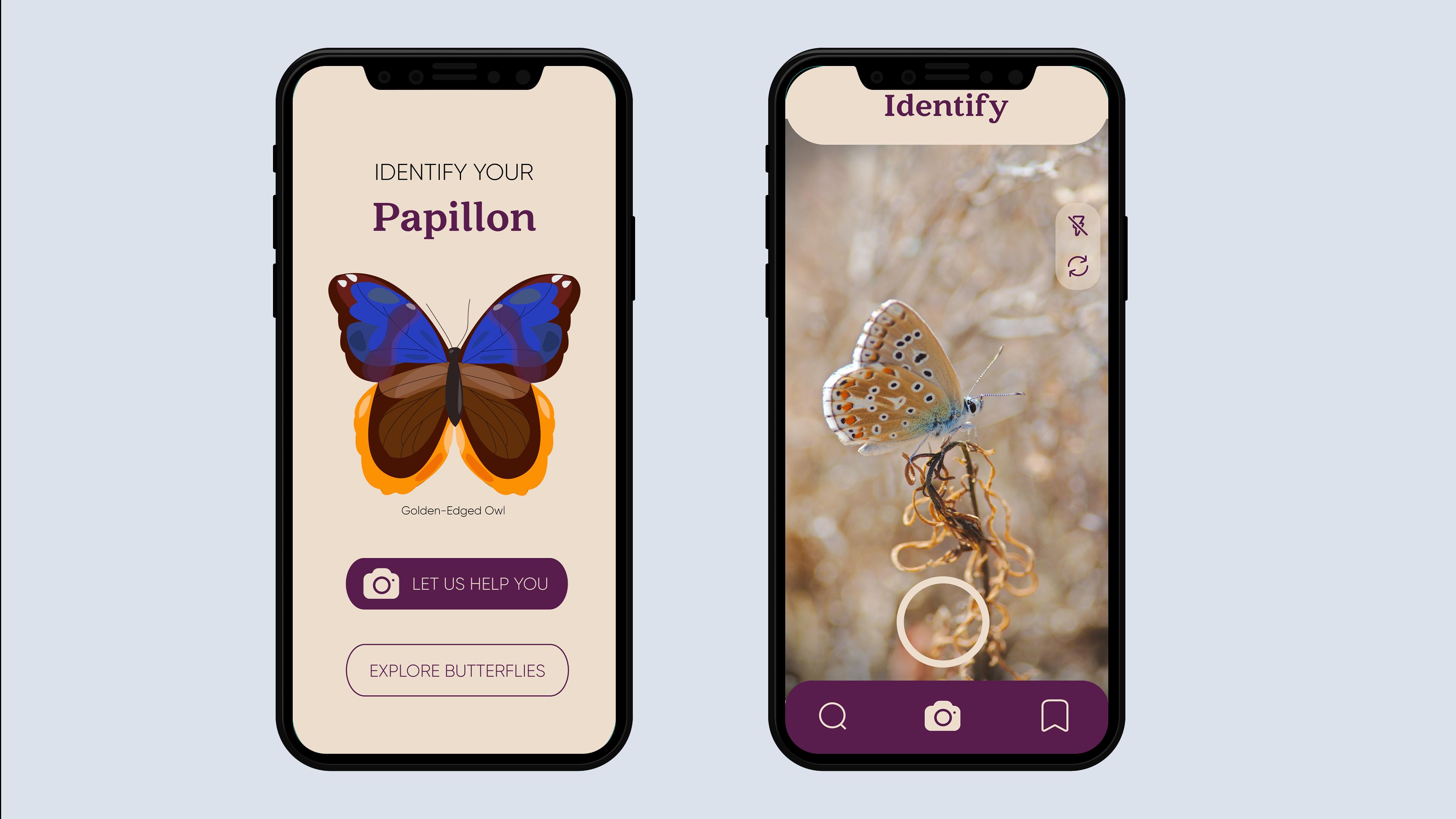 papillon-mockup3