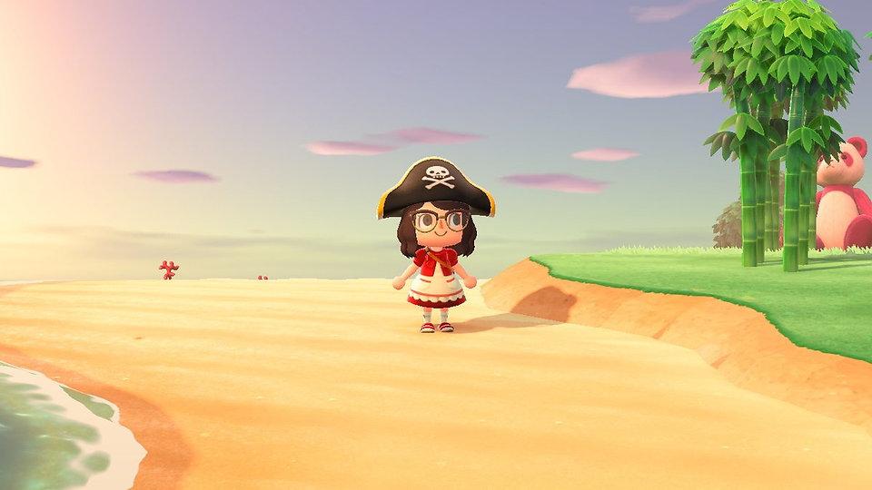 ac-pirate.jpeg