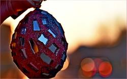 DSC_2287 uovo rosso strada controluce -