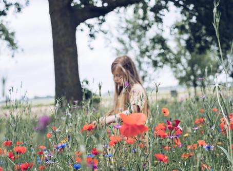 flower field | privé