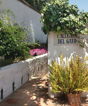 restaurant-calle-gato-urbanizacion-la-virginia.jpg