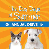 Dog Days of Summer Annual Drive
