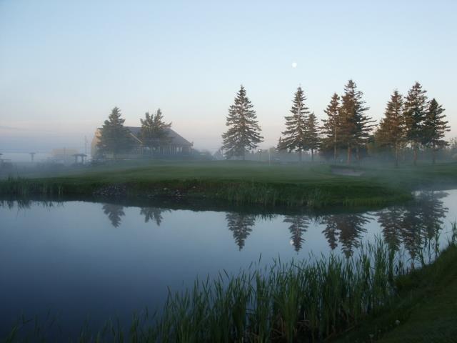 matin de brume